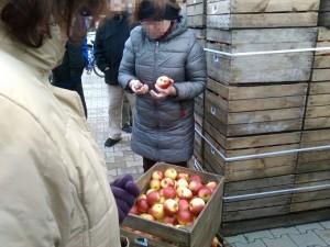 FLJ rozdaje jabłka